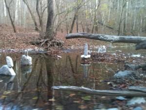 Jessamine Creek